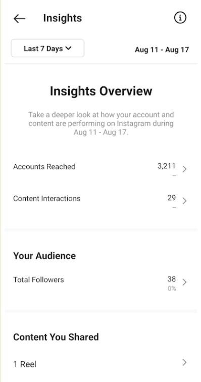 Instagram Insight